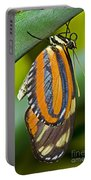 Tiger Mimic Queen Butterfly Portable Battery Charger