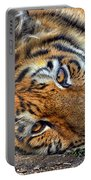 Tiger Nap Time Portable Battery Charger
