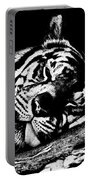 Tiger R And R Black And White Portable Battery Charger