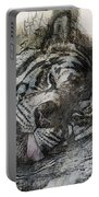 Tiger R And R Portable Battery Charger