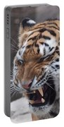 Tiger Smile Portable Battery Charger
