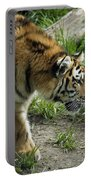 Tiger Stalking Portable Battery Charger