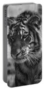 Tiger Stare In Black And White Portable Battery Charger