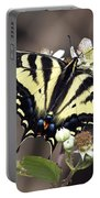 Tiger Swallowtail Butterfly 2a Portable Battery Charger