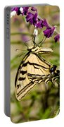 Tiger Swallowtail Butterfly Feeding Portable Battery Charger