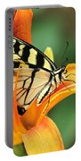 Tiger Swallowtail Butterfly On Daylily Portable Battery Charger