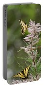 Tiger Swallowtails Portable Battery Charger
