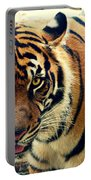 Tiger Tongue Two Portable Battery Charger