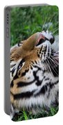 Tiger Tongue Portable Battery Charger by Dan Sproul