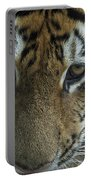Tiger You Looking At Me Portable Battery Charger