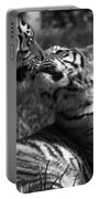 Tigers Kissing Portable Battery Charger