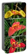 Tigridia Pavonia Portable Battery Charger