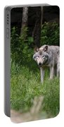 Timber Wolf In Forest Portable Battery Charger