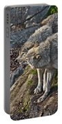 Timber Wolf Pictures 1094 Portable Battery Charger