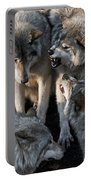 Timber Wolf Pictures 1096 Portable Battery Charger
