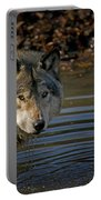 Timber Wolf Pictures 1103 Portable Battery Charger