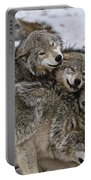 Timber Wolf Pictures 120 Portable Battery Charger