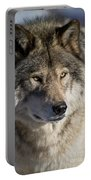 Timber Wolf Pictures 1218 Portable Battery Charger