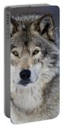Timber Wolf Pictures 1271 Portable Battery Charger