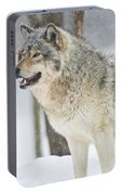 Timber Wolf Pictures 1302 Portable Battery Charger