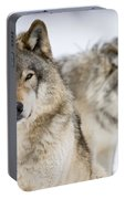 Timber Wolf Pictures 1312 Portable Battery Charger