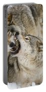 Timber Wolf Pictures 1314 Portable Battery Charger