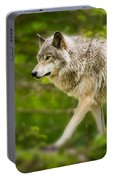 Timber Wolf Pictures 1329 Portable Battery Charger