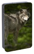 Timber Wolf Pictures 1336 Portable Battery Charger