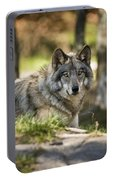 Timber Wolf Pictures 1363 Portable Battery Charger