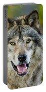 Timber Wolf Pictures 1388 Portable Battery Charger