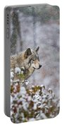 Timber Wolf Pictures 1395 Portable Battery Charger