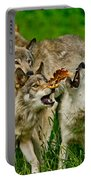 Timber Wolf Pictures 1593 Portable Battery Charger