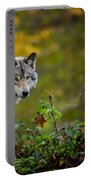 Timber Wolf Pictures 1627 Portable Battery Charger
