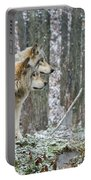 Timber Wolf Pictures 184 Portable Battery Charger