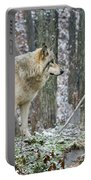 Timber Wolf Pictures 185 Portable Battery Charger