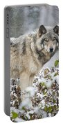 Timber Wolf Pictures 187 Portable Battery Charger