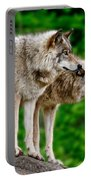 Timber Wolf Pictures 191 Portable Battery Charger