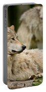 Timber Wolf Pictures 192 Portable Battery Charger