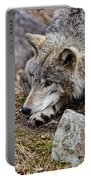 Timber Wolf Pictures 205 Portable Battery Charger