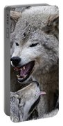 Timber Wolf Pictures 210 Portable Battery Charger