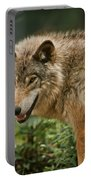 Timber Wolf Pictures 262 Portable Battery Charger