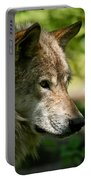 Timber Wolf Pictures 263 Portable Battery Charger