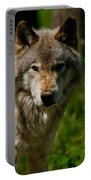 Timber Wolf Pictures 266 Portable Battery Charger