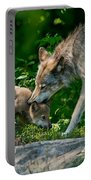 Timber Wolf Pictures 332 Portable Battery Charger