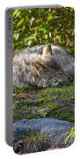 Timber Wolf Pictures 42 Portable Battery Charger