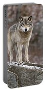 Timber Wolf Pictures 495 Portable Battery Charger