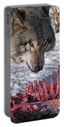 Timber Wolf Pictures 552 Portable Battery Charger