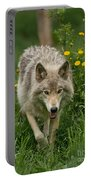 Timber Wolf Pictures 59 Portable Battery Charger