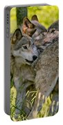 Timber Wolf Pictures 61 Portable Battery Charger