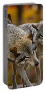 Timber Wolf Pictures 62 Portable Battery Charger